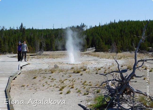 Продолжаю делится впечатлениями от поездки в Йе́ллоустон (Yellowstone National Park)— международный биосферный заповедник, объект Всемирного Наследия ЮНЕСКО, первый в мире национальный парк (основан 1 марта 1872 года). Находится в США, на территории штатов Вайоминг, Монтана и Айдахо. Парк знаменит многочисленными гейзерами и другими геотермическими объектами, богатой живой природой, живописными ландшафтами. ( взято из Википедии )  Мы останавливались в кемпингах в палатках. Парк произвел на нас огромное впечатление. Очень хочется поделится с вами красотой которую я увидела. В один фоторепортаж трудно вместить все увиденное поэтому это уже третий и будут еще...  фото 17