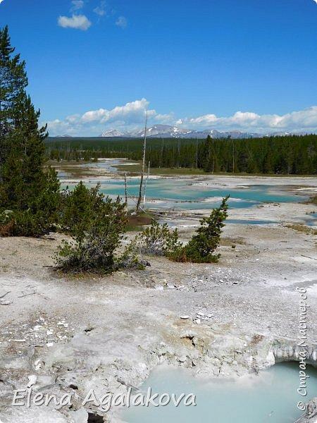 Продолжаю делится впечатлениями от поездки в Йе́ллоустон (Yellowstone National Park)— международный биосферный заповедник, объект Всемирного Наследия ЮНЕСКО, первый в мире национальный парк (основан 1 марта 1872 года). Находится в США, на территории штатов Вайоминг, Монтана и Айдахо. Парк знаменит многочисленными гейзерами и другими геотермическими объектами, богатой живой природой, живописными ландшафтами. ( взято из Википедии )  Мы останавливались в кемпингах в палатках. Парк произвел на нас огромное впечатление. Очень хочется поделится с вами красотой которую я увидела. В один фоторепортаж трудно вместить все увиденное поэтому это уже третий и будут еще...  фото 26