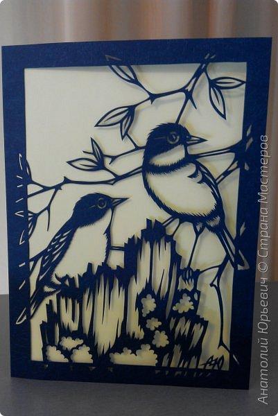 """Всем доброго времени суток! Вашему вниманию новая открытка с птичками. - Золотобрюхая зарянковая мухоловка (Eopsaltria australis) — это вид из семейства Австралийские зарянки, обитающий на в прибрежных районах восточной Австралии. -  Как и все австралийские мухоловки, предпочитает густые леса, дающие много тени. Охотится, сидя на стволе дерева, проводе или низко расположенной ветке и ловя пролетающих мимо насекомых. Питается в основном насекомыми, но также и другими мелкими беспозвоночными. -  Гнездится - как и многие другие австралийские птицы - обычно колониями. Гнездо - аккуратная чашечка, сплетённая из тонких растительных волокон и паутины - обычно располагается в развилке веток и великолепно замаскировано с помощью лишайников, мха, древесной коры и листьев. -  Эскиз для """"вырезалки"""" выполнен, изменён и доработан по цветной работе австралийского художника анималиста Eric shepherd. -  Размер открытки 12х16см. (как всегда:)) фото 14"""