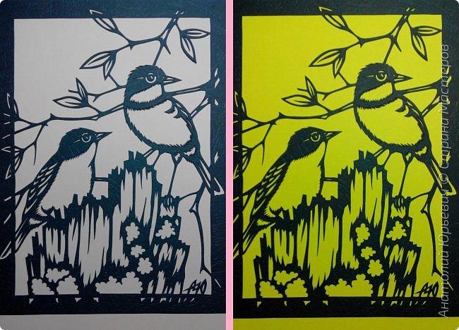 """Всем доброго времени суток! Вашему вниманию новая открытка с птичками. - Золотобрюхая зарянковая мухоловка (Eopsaltria australis) — это вид из семейства Австралийские зарянки, обитающий на в прибрежных районах восточной Австралии. -  Как и все австралийские мухоловки, предпочитает густые леса, дающие много тени. Охотится, сидя на стволе дерева, проводе или низко расположенной ветке и ловя пролетающих мимо насекомых. Питается в основном насекомыми, но также и другими мелкими беспозвоночными. -  Гнездится - как и многие другие австралийские птицы - обычно колониями. Гнездо - аккуратная чашечка, сплетённая из тонких растительных волокон и паутины - обычно располагается в развилке веток и великолепно замаскировано с помощью лишайников, мха, древесной коры и листьев. -  Эскиз для """"вырезалки"""" выполнен, изменён и доработан по цветной работе австралийского художника анималиста Eric shepherd. -  Размер открытки 12х16см. (как всегда:)) фото 9"""
