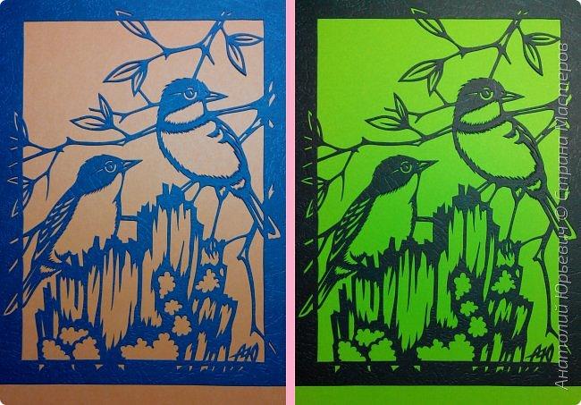 """Всем доброго времени суток! Вашему вниманию новая открытка с птичками. - Золотобрюхая зарянковая мухоловка (Eopsaltria australis) — это вид из семейства Австралийские зарянки, обитающий на в прибрежных районах восточной Австралии. -  Как и все австралийские мухоловки, предпочитает густые леса, дающие много тени. Охотится, сидя на стволе дерева, проводе или низко расположенной ветке и ловя пролетающих мимо насекомых. Питается в основном насекомыми, но также и другими мелкими беспозвоночными. -  Гнездится - как и многие другие австралийские птицы - обычно колониями. Гнездо - аккуратная чашечка, сплетённая из тонких растительных волокон и паутины - обычно располагается в развилке веток и великолепно замаскировано с помощью лишайников, мха, древесной коры и листьев. -  Эскиз для """"вырезалки"""" выполнен, изменён и доработан по цветной работе австралийского художника анималиста Eric shepherd. -  Размер открытки 12х16см. (как всегда:)) фото 10"""