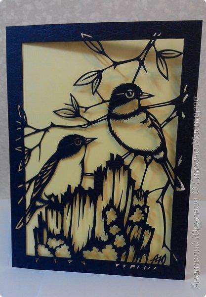 """Всем доброго времени суток! Вашему вниманию новая открытка с птичками. - Золотобрюхая зарянковая мухоловка (Eopsaltria australis) — это вид из семейства Австралийские зарянки, обитающий на в прибрежных районах восточной Австралии. -  Как и все австралийские мухоловки, предпочитает густые леса, дающие много тени. Охотится, сидя на стволе дерева, проводе или низко расположенной ветке и ловя пролетающих мимо насекомых. Питается в основном насекомыми, но также и другими мелкими беспозвоночными. -  Гнездится - как и многие другие австралийские птицы - обычно колониями. Гнездо - аккуратная чашечка, сплетённая из тонких растительных волокон и паутины - обычно располагается в развилке веток и великолепно замаскировано с помощью лишайников, мха, древесной коры и листьев. -  Эскиз для """"вырезалки"""" выполнен, изменён и доработан по цветной работе австралийского художника анималиста Eric shepherd. -  Размер открытки 12х16см. (как всегда:)) фото 1"""
