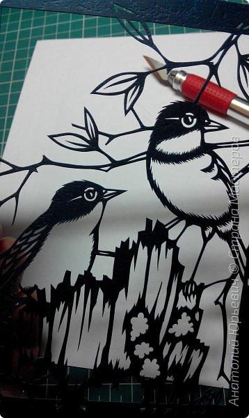 """Всем доброго времени суток! Вашему вниманию новая открытка с птичками. - Золотобрюхая зарянковая мухоловка (Eopsaltria australis) — это вид из семейства Австралийские зарянки, обитающий на в прибрежных районах восточной Австралии. -  Как и все австралийские мухоловки, предпочитает густые леса, дающие много тени. Охотится, сидя на стволе дерева, проводе или низко расположенной ветке и ловя пролетающих мимо насекомых. Питается в основном насекомыми, но также и другими мелкими беспозвоночными. -  Гнездится - как и многие другие австралийские птицы - обычно колониями. Гнездо - аккуратная чашечка, сплетённая из тонких растительных волокон и паутины - обычно располагается в развилке веток и великолепно замаскировано с помощью лишайников, мха, древесной коры и листьев. -  Эскиз для """"вырезалки"""" выполнен, изменён и доработан по цветной работе австралийского художника анималиста Eric shepherd. -  Размер открытки 12х16см. (как всегда:)) фото 3"""