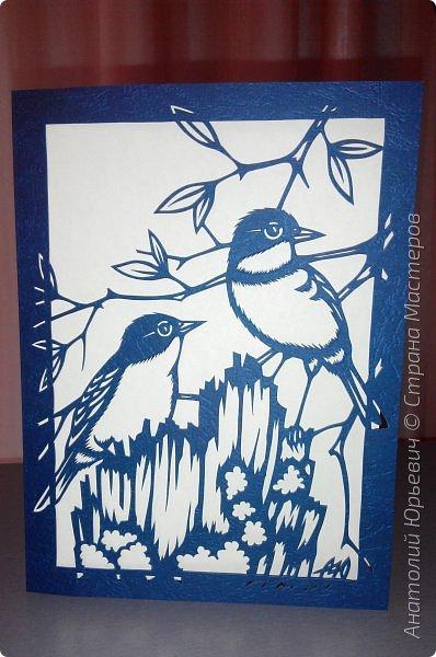 """Всем доброго времени суток! Вашему вниманию новая открытка с птичками. - Золотобрюхая зарянковая мухоловка (Eopsaltria australis) — это вид из семейства Австралийские зарянки, обитающий на в прибрежных районах восточной Австралии. -  Как и все австралийские мухоловки, предпочитает густые леса, дающие много тени. Охотится, сидя на стволе дерева, проводе или низко расположенной ветке и ловя пролетающих мимо насекомых. Питается в основном насекомыми, но также и другими мелкими беспозвоночными. -  Гнездится - как и многие другие австралийские птицы - обычно колониями. Гнездо - аккуратная чашечка, сплетённая из тонких растительных волокон и паутины - обычно располагается в развилке веток и великолепно замаскировано с помощью лишайников, мха, древесной коры и листьев. -  Эскиз для """"вырезалки"""" выполнен, изменён и доработан по цветной работе австралийского художника анималиста Eric shepherd. -  Размер открытки 12х16см. (как всегда:)) фото 13"""