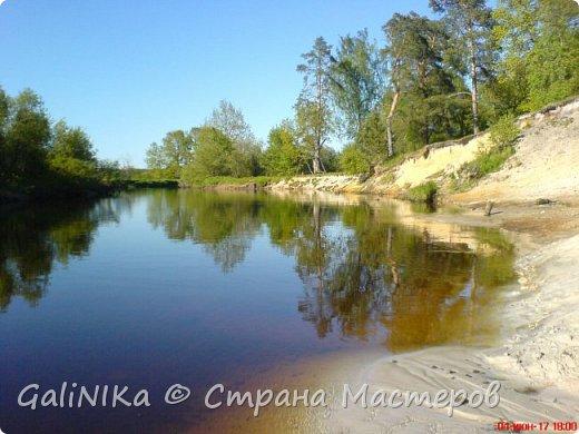 Каким бы лето не было –  в нём есть чему любоваться! В июне, июле и для меня нашлось … Река Луга в Ленинградской области.  фото 1