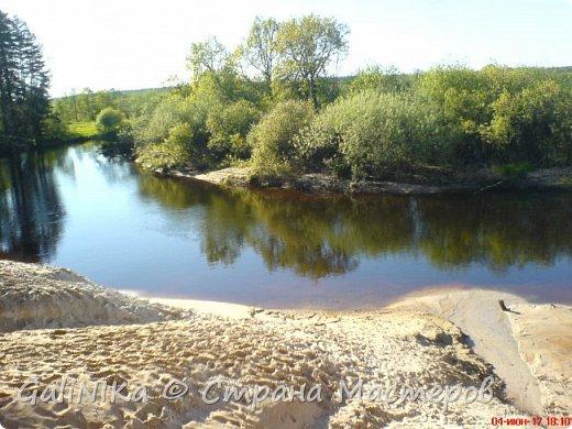 Каким бы лето не было –  в нём есть чему любоваться! В июне, июле и для меня нашлось … Река Луга в Ленинградской области.  фото 2