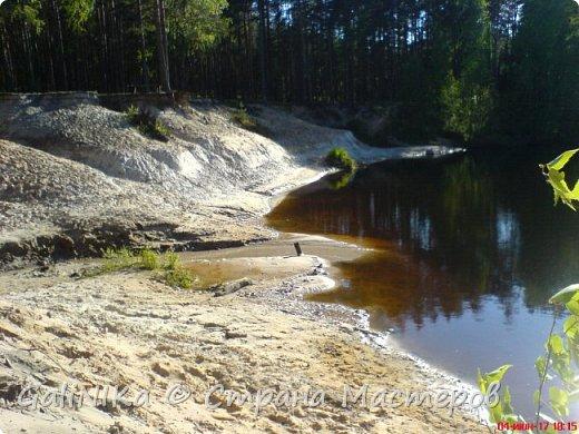 Каким бы лето не было –  в нём есть чему любоваться! В июне, июле и для меня нашлось … Река Луга в Ленинградской области.  фото 5