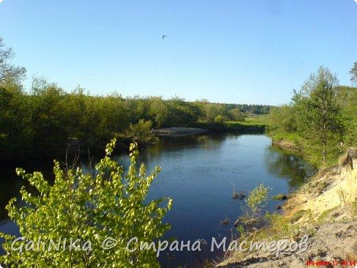 Каким бы лето не было –  в нём есть чему любоваться! В июне, июле и для меня нашлось … Река Луга в Ленинградской области.  фото 6
