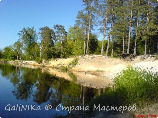 Каким бы лето не было –  в нём есть чему любоваться! В июне, июле и для меня нашлось … Река Луга в Ленинградской области.  фото 3