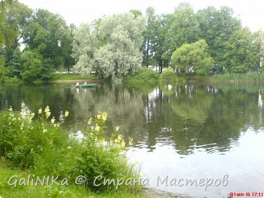 Каким бы лето не было –  в нём есть чему любоваться! В июне, июле и для меня нашлось … Река Луга в Ленинградской области.  фото 49