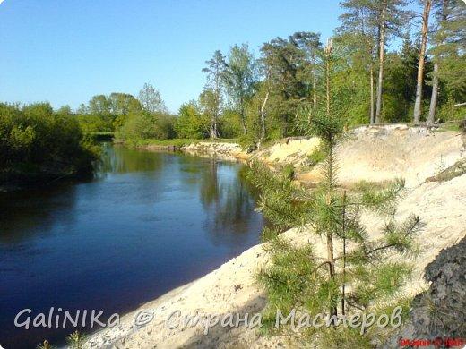 Каким бы лето не было –  в нём есть чему любоваться! В июне, июле и для меня нашлось … Река Луга в Ленинградской области.  фото 7