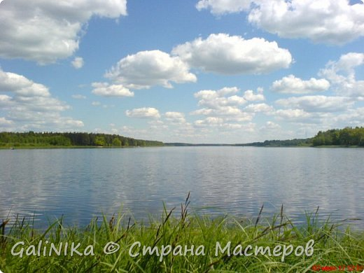 Каким бы лето не было –  в нём есть чему любоваться! В июне, июле и для меня нашлось … Река Луга в Ленинградской области.  фото 9