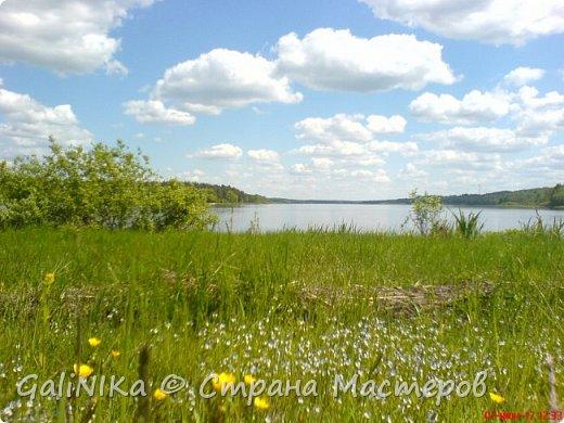 Каким бы лето не было –  в нём есть чему любоваться! В июне, июле и для меня нашлось … Река Луга в Ленинградской области.  фото 10