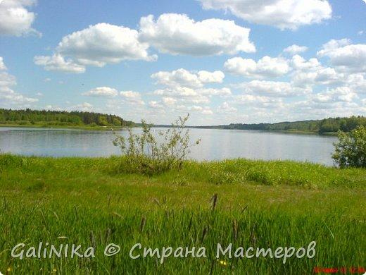 Каким бы лето не было –  в нём есть чему любоваться! В июне, июле и для меня нашлось … Река Луга в Ленинградской области.  фото 11