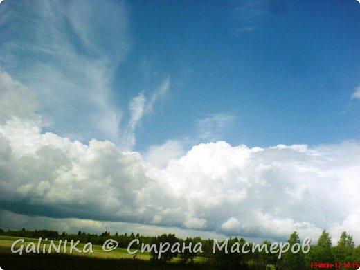 Каким бы лето не было –  в нём есть чему любоваться! В июне, июле и для меня нашлось … Река Луга в Ленинградской области.  фото 44