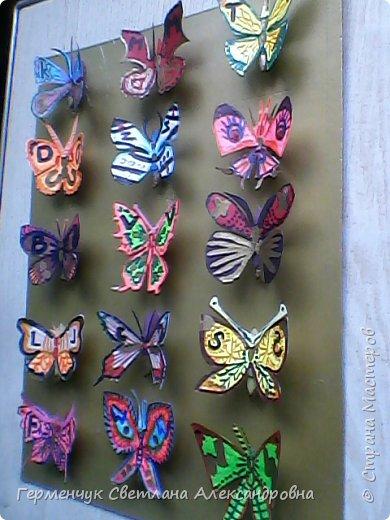 """Следующая коллекция - бабочки. Это  коллекция пригодится  к  урокам  """"Окружающий мир"""" . В Интернете нашла интересную информацию об этих насекомых: * бабочки пробуют пищу лапками  *бабочка монарх может пролететь 1000 км без остановки * некоторые виды  бабочек могут развивать скорость 50 км в час *некоторые  притворяются мертвыми при нападении хищников * бабочки различают красный,зеленый и желтый цвета *некоторые личинки могут общаться  с муравьями,издавая звуки *бабочки не спят *бабочка адмирал прилетает к нам из южных стран,отложить яички ,а потом  умереть Людям всегда будут нужны бабочки,ведь бабочки не просто красота ,а символ красоты!!! фото 6"""