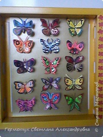 """Следующая коллекция - бабочки. Это  коллекция пригодится  к  урокам  """"Окружающий мир"""" . В Интернете нашла интересную информацию об этих насекомых: * бабочки пробуют пищу лапками  *бабочка монарх может пролететь 1000 км без остановки * некоторые виды  бабочек могут развивать скорость 50 км в час *некоторые  притворяются мертвыми при нападении хищников * бабочки различают красный,зеленый и желтый цвета *некоторые личинки могут общаться  с муравьями,издавая звуки *бабочки не спят *бабочка адмирал прилетает к нам из южных стран,отложить яички ,а потом  умереть Людям всегда будут нужны бабочки,ведь бабочки не просто красота ,а символ красоты!!! фото 1"""