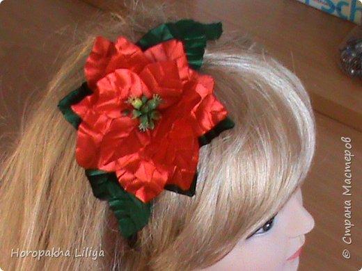Пуансеттия на обруч и как украшение новогоднего праздничного стола фото 1