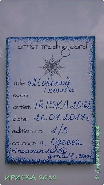 """Привем всем гостям моей странички!!!  Моя новая серия карточек в морской теме: """" Морской конёк"""". Вдохновитель моих карточек Ирина Самурайчик http://stranamasterov.ru/node/1091826?tid=656 , я увидела её морских коней и захотела повторить. Выбирает себе одну карточку Эл, одна останется дома. фото 13"""