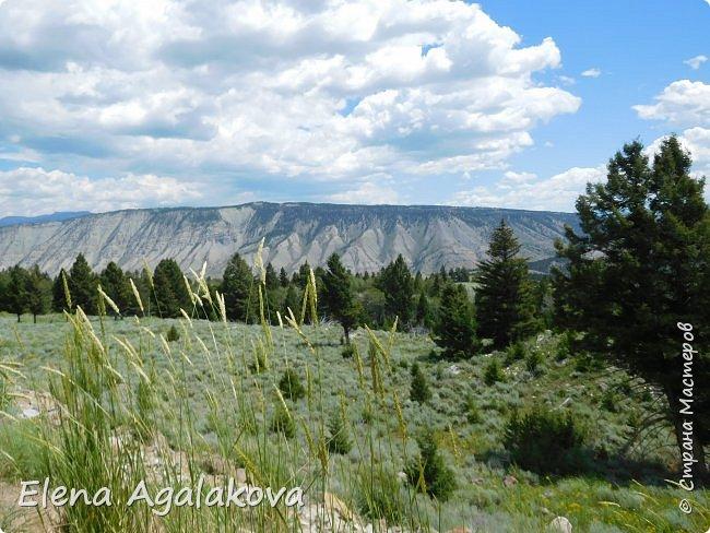 Продолжаю делится впечатлениями от поездки в Йе́ллоустон (Yellowstone National Park)— международный биосферный заповедник, объект Всемирного Наследия ЮНЕСКО, первый в мире национальный парк (основан 1 марта 1872 года). Находится в США, на территории штатов Вайоминг, Монтана и Айдахо. Парк знаменит многочисленными гейзерами и другими геотермическими объектами, богатой живой природой, живописными ландшафтами. ( взято из Википедии ) Мы останавливались в кемпингах в палатках. Парк произвел на нас огромное впечатление. Очень хочется поделится с вами красотой которую я увидела. В один фоторепортаж трудно вместить все увиденное поэтому это уже четвертый и будут еще...  фото 4