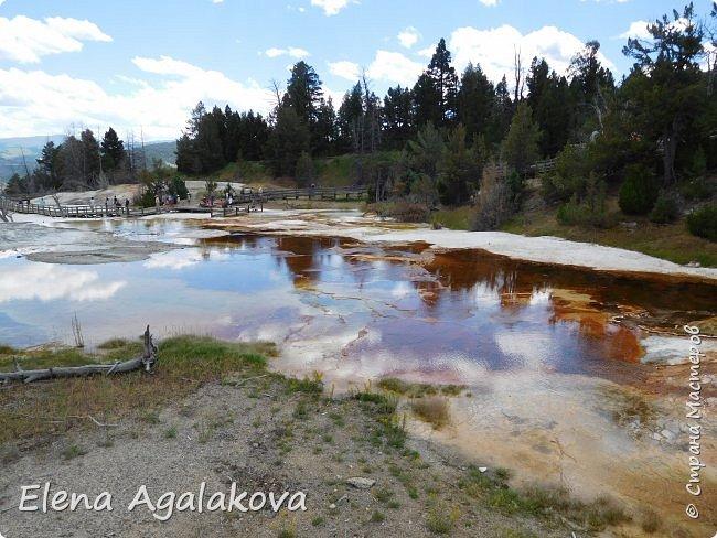 Продолжаю делится впечатлениями от поездки в Йе́ллоустон (Yellowstone National Park)— международный биосферный заповедник, объект Всемирного Наследия ЮНЕСКО, первый в мире национальный парк (основан 1 марта 1872 года). Находится в США, на территории штатов Вайоминг, Монтана и Айдахо. Парк знаменит многочисленными гейзерами и другими геотермическими объектами, богатой живой природой, живописными ландшафтами. ( взято из Википедии ) Мы останавливались в кемпингах в палатках. Парк произвел на нас огромное впечатление. Очень хочется поделится с вами красотой которую я увидела. В один фоторепортаж трудно вместить все увиденное поэтому это уже четвертый и будут еще...  фото 8