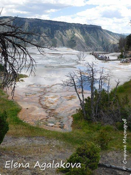 Продолжаю делится впечатлениями от поездки в Йе́ллоустон (Yellowstone National Park)— международный биосферный заповедник, объект Всемирного Наследия ЮНЕСКО, первый в мире национальный парк (основан 1 марта 1872 года). Находится в США, на территории штатов Вайоминг, Монтана и Айдахо. Парк знаменит многочисленными гейзерами и другими геотермическими объектами, богатой живой природой, живописными ландшафтами. ( взято из Википедии ) Мы останавливались в кемпингах в палатках. Парк произвел на нас огромное впечатление. Очень хочется поделится с вами красотой которую я увидела. В один фоторепортаж трудно вместить все увиденное поэтому это уже четвертый и будут еще...  фото 6