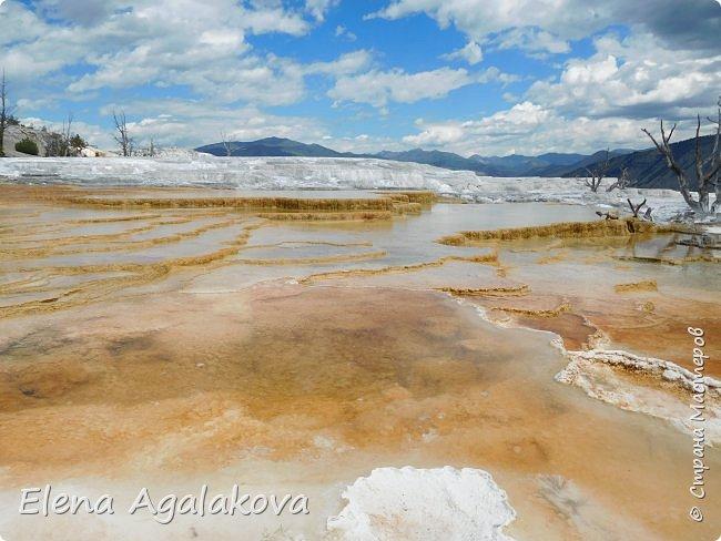 Продолжаю делится впечатлениями от поездки в Йе́ллоустон (Yellowstone National Park)— международный биосферный заповедник, объект Всемирного Наследия ЮНЕСКО, первый в мире национальный парк (основан 1 марта 1872 года). Находится в США, на территории штатов Вайоминг, Монтана и Айдахо. Парк знаменит многочисленными гейзерами и другими геотермическими объектами, богатой живой природой, живописными ландшафтами. ( взято из Википедии ) Мы останавливались в кемпингах в палатках. Парк произвел на нас огромное впечатление. Очень хочется поделится с вами красотой которую я увидела. В один фоторепортаж трудно вместить все увиденное поэтому это уже четвертый и будут еще...  фото 10