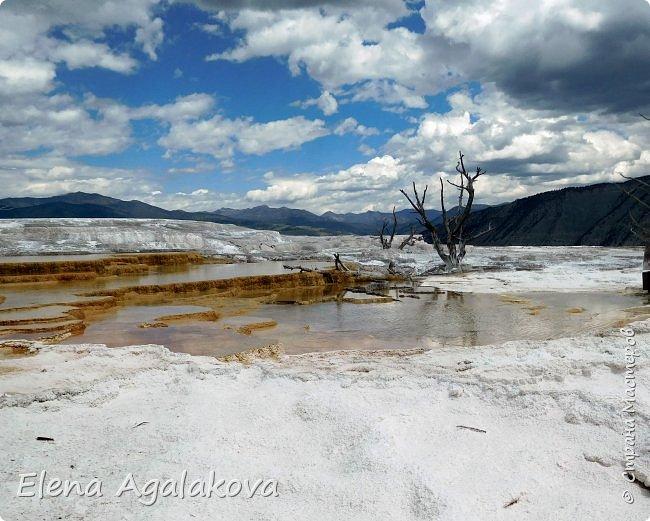 Продолжаю делится впечатлениями от поездки в Йе́ллоустон (Yellowstone National Park)— международный биосферный заповедник, объект Всемирного Наследия ЮНЕСКО, первый в мире национальный парк (основан 1 марта 1872 года). Находится в США, на территории штатов Вайоминг, Монтана и Айдахо. Парк знаменит многочисленными гейзерами и другими геотермическими объектами, богатой живой природой, живописными ландшафтами. ( взято из Википедии ) Мы останавливались в кемпингах в палатках. Парк произвел на нас огромное впечатление. Очень хочется поделится с вами красотой которую я увидела. В один фоторепортаж трудно вместить все увиденное поэтому это уже четвертый и будут еще...  фото 9