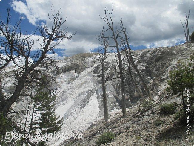 Продолжаю делится впечатлениями от поездки в Йе́ллоустон (Yellowstone National Park)— международный биосферный заповедник, объект Всемирного Наследия ЮНЕСКО, первый в мире национальный парк (основан 1 марта 1872 года). Находится в США, на территории штатов Вайоминг, Монтана и Айдахо. Парк знаменит многочисленными гейзерами и другими геотермическими объектами, богатой живой природой, живописными ландшафтами. ( взято из Википедии ) Мы останавливались в кемпингах в палатках. Парк произвел на нас огромное впечатление. Очень хочется поделится с вами красотой которую я увидела. В один фоторепортаж трудно вместить все увиденное поэтому это уже четвертый и будут еще...  фото 26