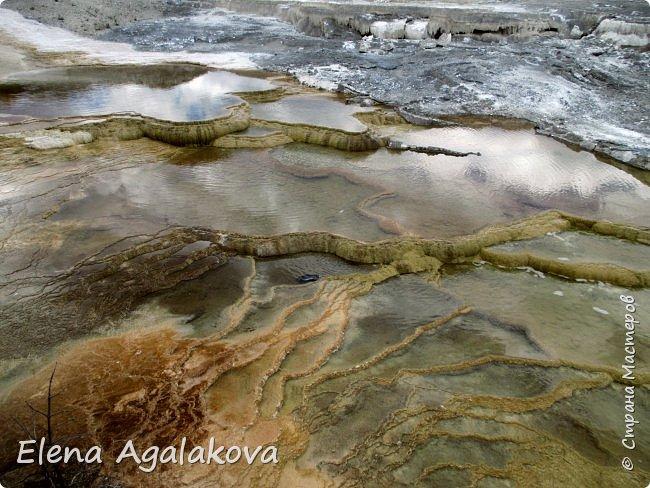 Продолжаю делится впечатлениями от поездки в Йе́ллоустон (Yellowstone National Park)— международный биосферный заповедник, объект Всемирного Наследия ЮНЕСКО, первый в мире национальный парк (основан 1 марта 1872 года). Находится в США, на территории штатов Вайоминг, Монтана и Айдахо. Парк знаменит многочисленными гейзерами и другими геотермическими объектами, богатой живой природой, живописными ландшафтами. ( взято из Википедии ) Мы останавливались в кемпингах в палатках. Парк произвел на нас огромное впечатление. Очень хочется поделится с вами красотой которую я увидела. В один фоторепортаж трудно вместить все увиденное поэтому это уже четвертый и будут еще...  фото 25