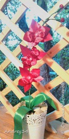 Канзаши Орхидея)) фото 1