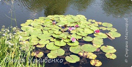 """Добрый день, уважаемые мастера и гости ВЕЛИКОЛЕПНОЙ СТРАНЫ! Вашему вниманию представляю небольшое видео о каскаде озер, где я сейчас живу, и мою новую авторскую песню """"Ой, бандуронько, золотоголоса"""" в моем же исполнении. Приятного просмотра! Больше моих работ на моем сайте http://olgaugnivenko.com/"""