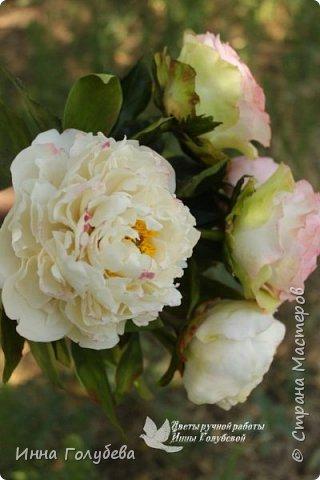 Букет из роз и пионов.Холодный фарфор. фото 1