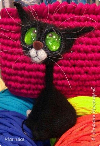 Кошек много не бывает. Хочу представить на Ваш суд своих котов по описанию Светланы Перцевой. фото 2