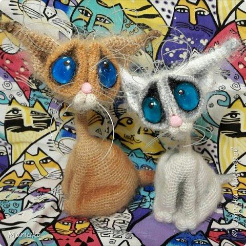 Кошек много не бывает. Хочу представить на Ваш суд своих котов по описанию Светланы Перцевой. фото 8