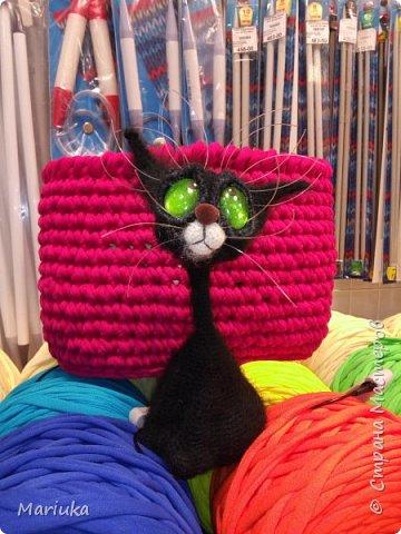 Кошек много не бывает. Хочу представить на Ваш суд своих котов по описанию Светланы Перцевой. фото 3