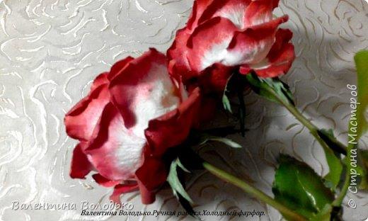 Доброе утро мастера и мастерицы!!!!Попросили меня слепить еще две розы к давнишнему букету,вот результат. фото 3