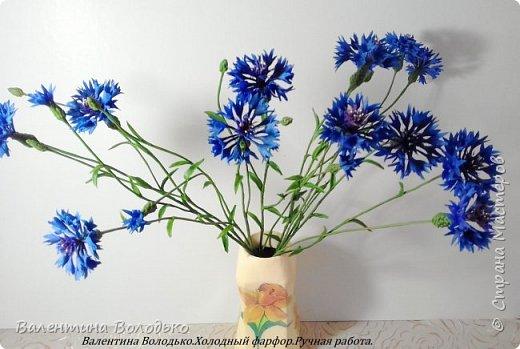 Доброе утро мастера и мастерицы!!!!Попросили меня слепить еще две розы к давнишнему букету,вот результат. фото 6