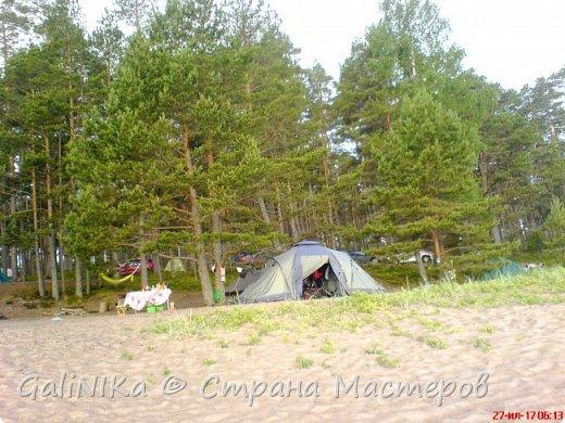 Каким бы лето не было –  в нём есть чему любоваться! В июне, июле и для меня нашлось … Река Луга в Ленинградской области.  фото 56