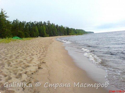 Каким бы лето не было –  в нём есть чему любоваться! В июне, июле и для меня нашлось … Река Луга в Ленинградской области.  фото 57
