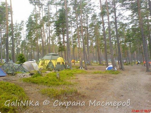 Каким бы лето не было –  в нём есть чему любоваться! В июне, июле и для меня нашлось … Река Луга в Ленинградской области.  фото 61
