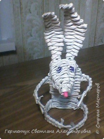 Игрушка - зайчик из бумажных трубочек,но похож на мышку с длинными ушами. Позаимствовала    идею  у   Галины Павличенко ( Тимощук)   С плетением  такого зайчика  могут  справится   ребята начальных классов фото 8