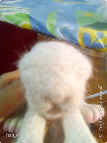 Альбинос) фото 12