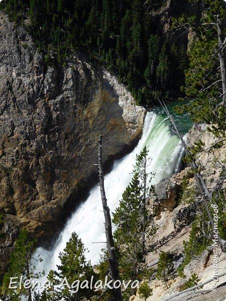 Продолжаю делится впечатлениями от поездки в Йе́ллоустон (Yellowstone National Park)— международный биосферный заповедник, объект Всемирного Наследия ЮНЕСКО, первый в мире национальный парк (основан 1 марта 1872 года). Находится в США, на территории штатов Вайоминг, Монтана и Айдахо. Парк знаменит многочисленными гейзерами и другими геотермическими объектами, богатой живой природой, живописными ландшафтами. ( взято из Википедии ) Мы останавливались в кемпингах в палатках. Парк произвел на нас огромное впечатление. Очень хочется поделится с вами красотой которую я увидела. В один фоторепортаж трудно вместить все увиденное поэтому это уже пятый и будут еще... В этот раз я покажу фото Большого каньона парка Йеллоустон.  Жалко что при загрузке фото уменьшаются и теряется качество поэтому смотрятся картинки плоско... но с этим я ничего поделать не могу. фото 3