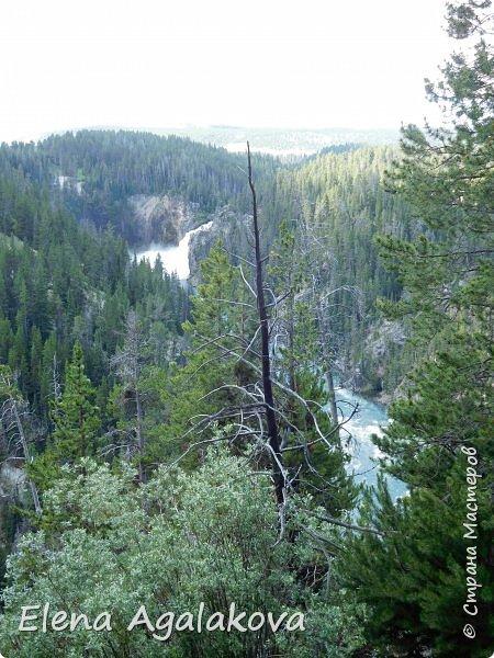 Продолжаю делится впечатлениями от поездки в Йе́ллоустон (Yellowstone National Park)— международный биосферный заповедник, объект Всемирного Наследия ЮНЕСКО, первый в мире национальный парк (основан 1 марта 1872 года). Находится в США, на территории штатов Вайоминг, Монтана и Айдахо. Парк знаменит многочисленными гейзерами и другими геотермическими объектами, богатой живой природой, живописными ландшафтами. ( взято из Википедии ) Мы останавливались в кемпингах в палатках. Парк произвел на нас огромное впечатление. Очень хочется поделится с вами красотой которую я увидела. В один фоторепортаж трудно вместить все увиденное поэтому это уже пятый и будут еще... В этот раз я покажу фото Большого каньона парка Йеллоустон.  Жалко что при загрузке фото уменьшаются и теряется качество поэтому смотрятся картинки плоско... но с этим я ничего поделать не могу. фото 17