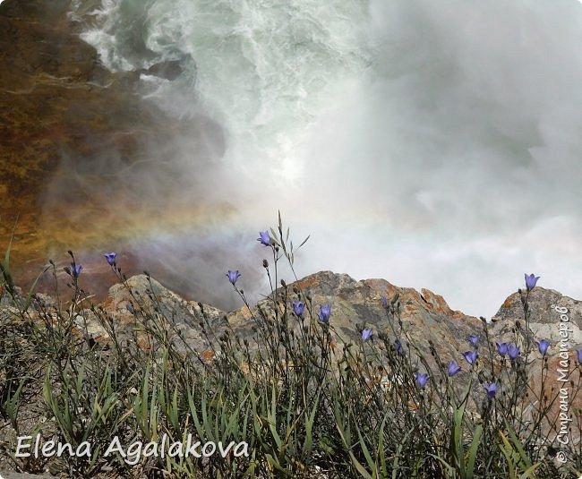Продолжаю делится впечатлениями от поездки в Йе́ллоустон (Yellowstone National Park)— международный биосферный заповедник, объект Всемирного Наследия ЮНЕСКО, первый в мире национальный парк (основан 1 марта 1872 года). Находится в США, на территории штатов Вайоминг, Монтана и Айдахо. Парк знаменит многочисленными гейзерами и другими геотермическими объектами, богатой живой природой, живописными ландшафтами. ( взято из Википедии ) Мы останавливались в кемпингах в палатках. Парк произвел на нас огромное впечатление. Очень хочется поделится с вами красотой которую я увидела. В один фоторепортаж трудно вместить все увиденное поэтому это уже пятый и будут еще... В этот раз я покажу фото Большого каньона парка Йеллоустон.  Жалко что при загрузке фото уменьшаются и теряется качество поэтому смотрятся картинки плоско... но с этим я ничего поделать не могу. фото 23