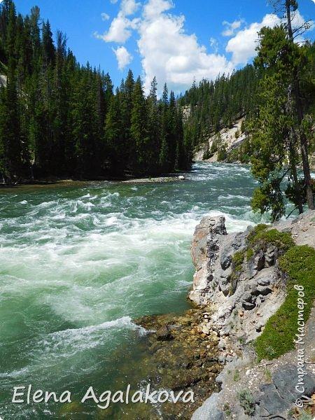 Продолжаю делится впечатлениями от поездки в Йе́ллоустон (Yellowstone National Park)— международный биосферный заповедник, объект Всемирного Наследия ЮНЕСКО, первый в мире национальный парк (основан 1 марта 1872 года). Находится в США, на территории штатов Вайоминг, Монтана и Айдахо. Парк знаменит многочисленными гейзерами и другими геотермическими объектами, богатой живой природой, живописными ландшафтами. ( взято из Википедии ) Мы останавливались в кемпингах в палатках. Парк произвел на нас огромное впечатление. Очень хочется поделится с вами красотой которую я увидела. В один фоторепортаж трудно вместить все увиденное поэтому это уже пятый и будут еще... В этот раз я покажу фото Большого каньона парка Йеллоустон.  Жалко что при загрузке фото уменьшаются и теряется качество поэтому смотрятся картинки плоско... но с этим я ничего поделать не могу. фото 25