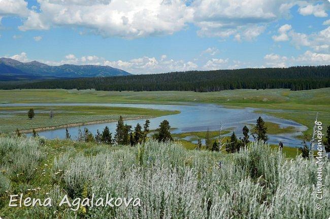 Продолжаю делится впечатлениями от поездки в Йе́ллоустон (Yellowstone National Park)— международный биосферный заповедник, объект Всемирного Наследия ЮНЕСКО, первый в мире национальный парк (основан 1 марта 1872 года). Находится в США, на территории штатов Вайоминг, Монтана и Айдахо. Парк знаменит многочисленными гейзерами и другими геотермическими объектами, богатой живой природой, живописными ландшафтами. ( взято из Википедии ) Мы останавливались в кемпингах в палатках. Парк произвел на нас огромное впечатление. Очень хочется поделится с вами красотой которую я увидела. В один фоторепортаж трудно вместить все увиденное поэтому это уже пятый и будут еще... В этот раз я покажу фото Большого каньона парка Йеллоустон.  Жалко что при загрузке фото уменьшаются и теряется качество поэтому смотрятся картинки плоско... но с этим я ничего поделать не могу. фото 31