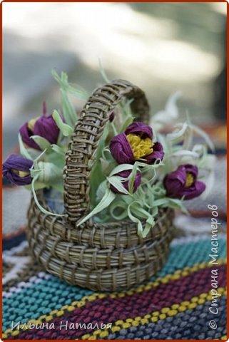 Крымский комплимент (сосновая игла, талаш) фото 1