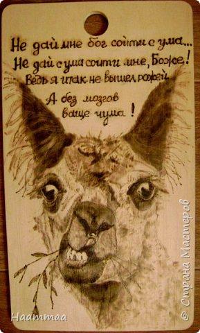 Умный пес фото 2